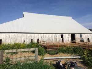 agricultural building needs siding